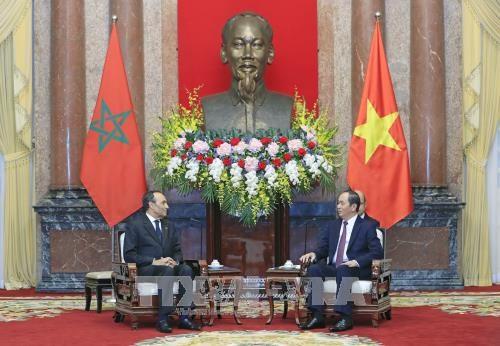 越南国家主席陈大光会见摩洛哥众议院议长哈比博·马勒克 hinh anh 1