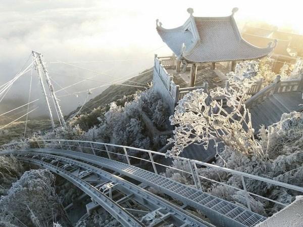 大雪覆盖番西邦峰 许多牲畜被冻死 hinh anh 1