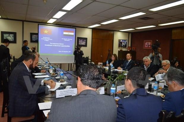 越南驻埃及大使:充分发挥潜力推动越埃经贸合作关系向前发展 hinh anh 1