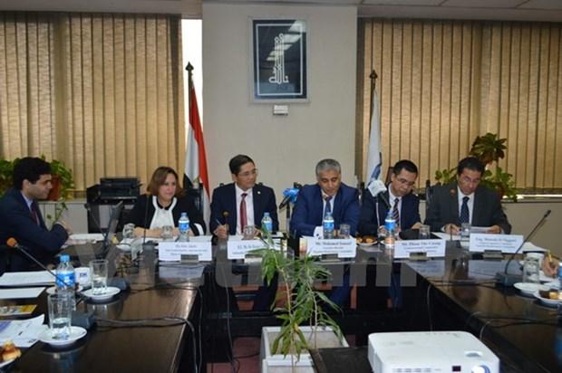 越南驻埃及大使:充分发挥潜力推动越埃经贸合作关系向前发展 hinh anh 2