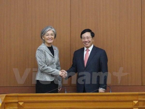 政府副总理兼外长范平明会见韩国总统和总理 同韩国外长举行会谈 hinh anh 3