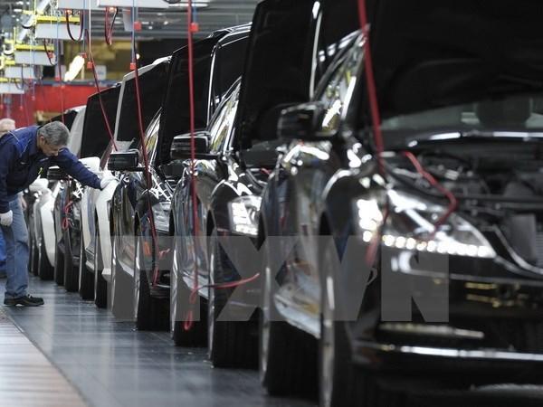 2017年全年越南汽车销量或将同比增长10% hinh anh 1