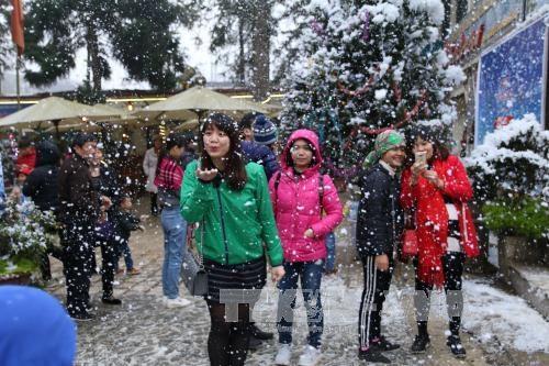 2017年沙巴冬日节:探索沙巴雪花 hinh anh 1