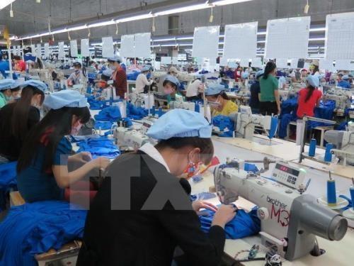 努力提高越南企业全球供应链参与能力 hinh anh 1