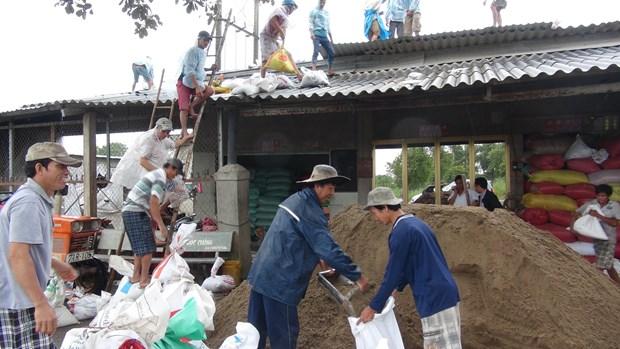 """越南各省市采取措施紧急应对第十六号台风""""天秤"""" hinh anh 1"""