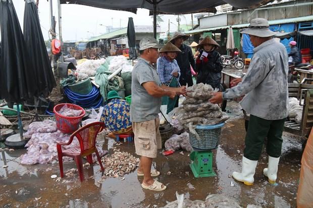 """越南各省市采取措施紧急应对第十六号台风""""天秤"""" hinh anh 2"""