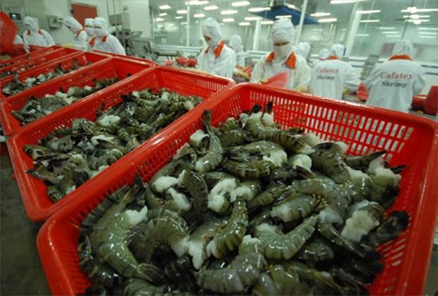 EVFTA生效后越南对欧盟的虾类出口将骤增 hinh anh 1