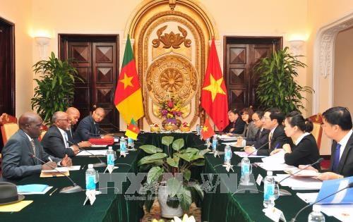 进一步加强越南与喀麦隆关系 hinh anh 2