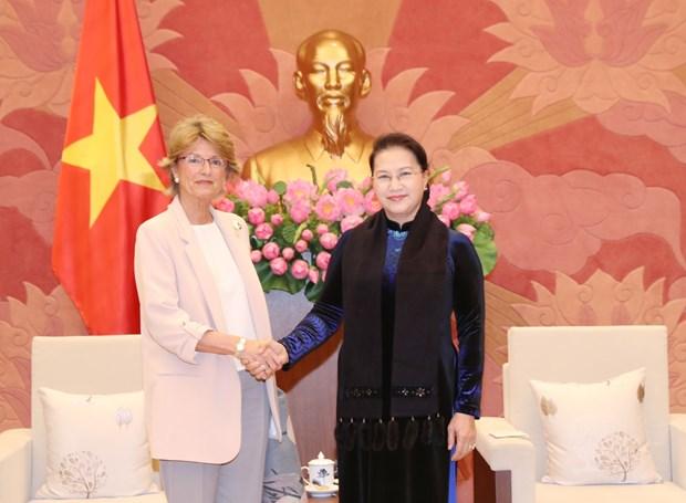 越南国会主席阮氏金银会见西班牙新任驻越南大使 hinh anh 2