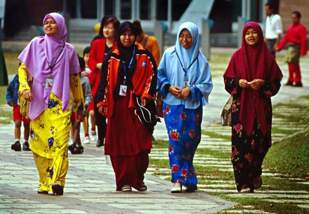 马来西亚拟定国民健康新政策 hinh anh 1
