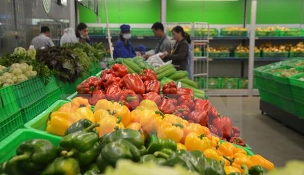 2017年越南农林水产品出口额达360多亿美元创新纪录 hinh anh 2