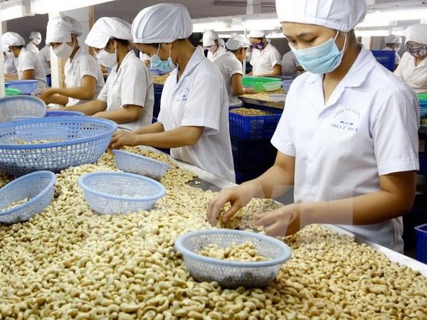 2017年越南农林水产品出口额达360多亿美元创新纪录 hinh anh 3