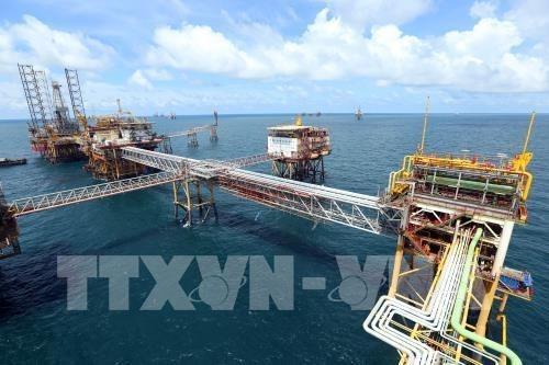 2018年越俄油气联营公司努力实现冷凝油产量达400万吨 hinh anh 1