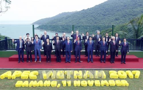 2017年APEC会议:促进区域合作 提高越南地位 hinh anh 1