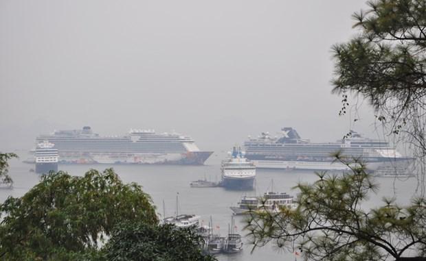 广宁省下龙市迎接4艘国际邮轮 承载游客6000多名 hinh anh 1