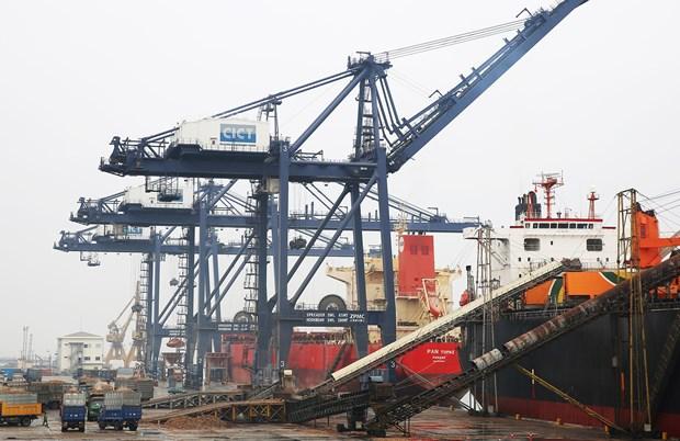 岘港港口和广宁省盖麟港迎接新年首批货物进港 hinh anh 2