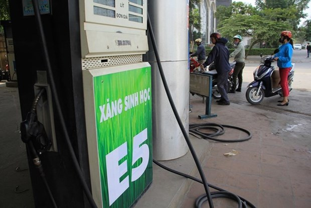 Petrolimex欧五柴油和欧四汽油产品正式问世 hinh anh 2