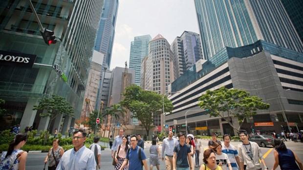 制造业是新加坡经济增长的重要引擎 hinh anh 1