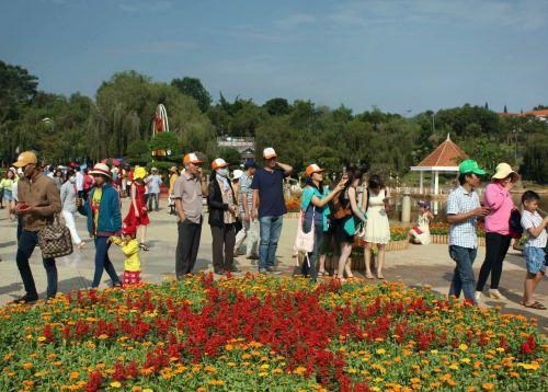 2017年大叻国际花卉展吸引逾6万名游客前来参观 hinh anh 1