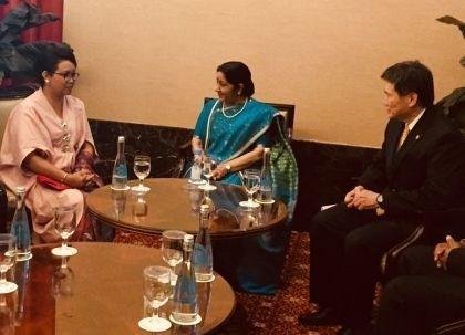 印度努力加强与东盟各国的合作关系 hinh anh 1