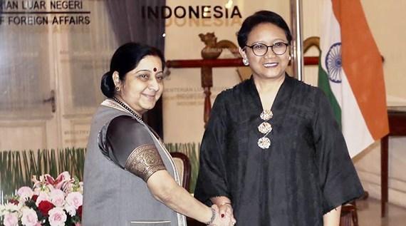印度努力加强与东盟各国的合作关系 hinh anh 2