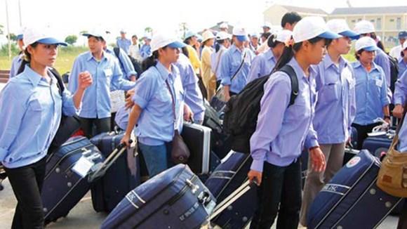 同塔省成为九龙江三角洲地区境外劳务输出工作的亮点 hinh anh 1