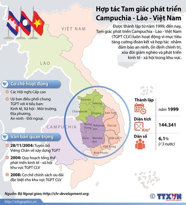 得乐省多家企业加大对老柬两国农林业项目投资力度 hinh anh 1