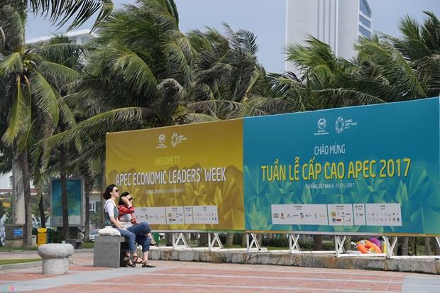 2017年APEC系列会议:越南塑造安全、友善和富有文化特色的国家形象 hinh anh 1