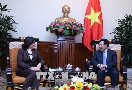 越南政府副总理兼外长范平明会见古巴新任驻越大使 hinh anh 1