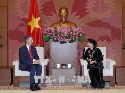 美国将越南的繁荣昌盛视为两国的共同利益 hinh anh 2