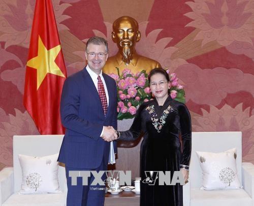 美国将越南的繁荣昌盛视为两国的共同利益 hinh anh 1