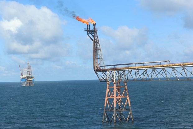 越南国家油气集团将提升石油储量 hinh anh 2