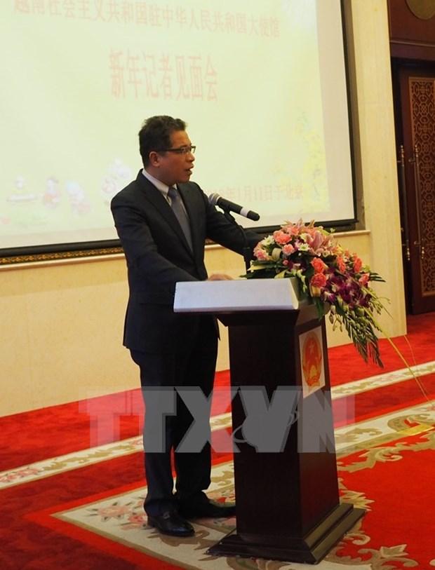 越南驻华大使邓明魁:两国贸易投资存在的问题将逐步得到改善 hinh anh 2