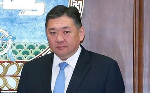 蒙古国家大呼拉尔主席即将对越南进行正式访问 hinh anh 1