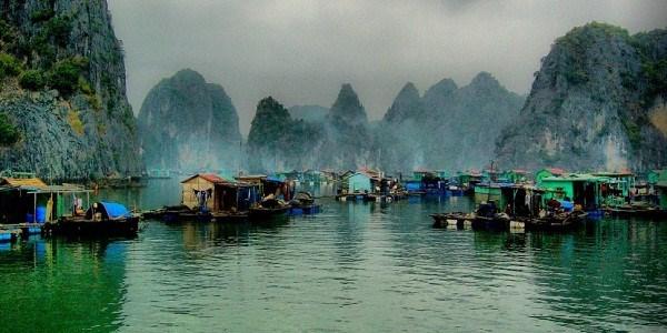 越南下龙湾万门渔村成最值得一去的村庄 hinh anh 2