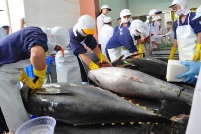 印度尼西亚加大对海事和渔业领域的投资力度 hinh anh 1