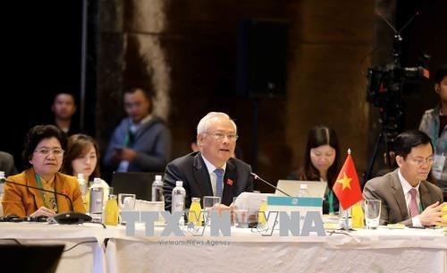 APPF第26届年会:与会代表就亚太地区合作与发展纷纷建言献策 hinh anh 2