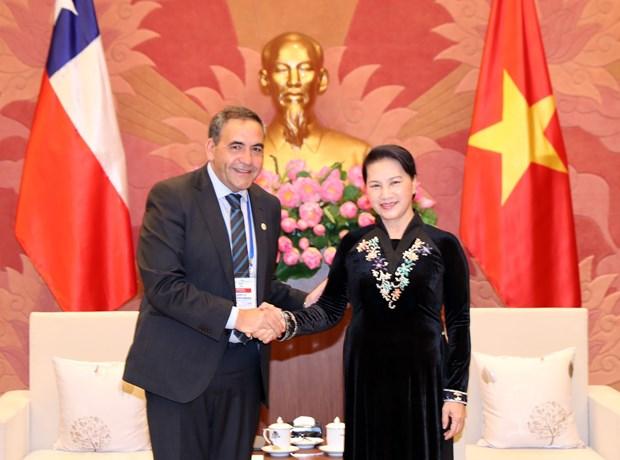越南国会主席阮氏金银会见智利众议院议长 hinh anh 1