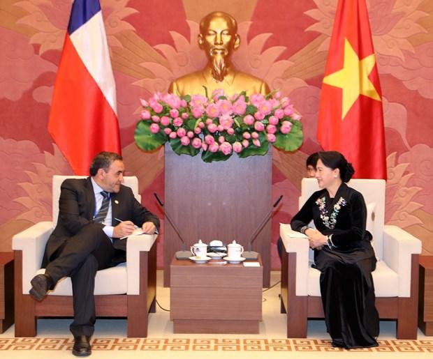 越南国会主席阮氏金银会见智利众议院议长 hinh anh 2