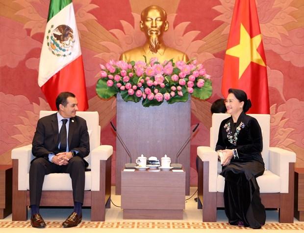 越南国会主席阮氏金银会见墨西哥参议长埃内斯托 hinh anh 1