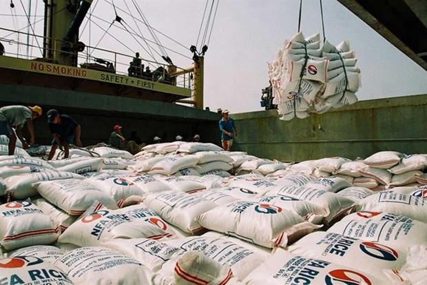 印尼将进行50万吨大米进口招标 越南迎来大米出口机会 hinh anh 1