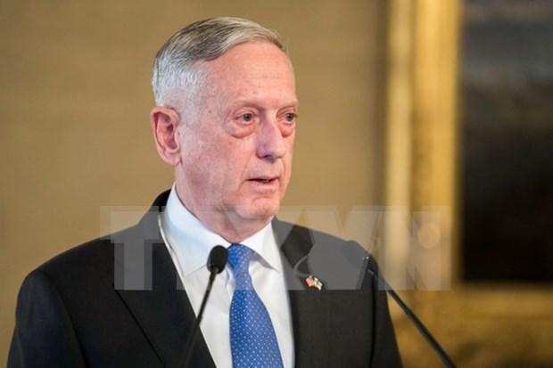 美国防长会见印尼外长 hinh anh 1