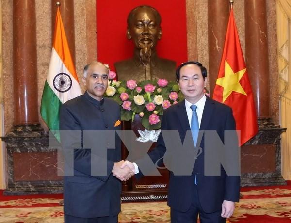 越南在印度向东行动政策中占有核心地位 hinh anh 1