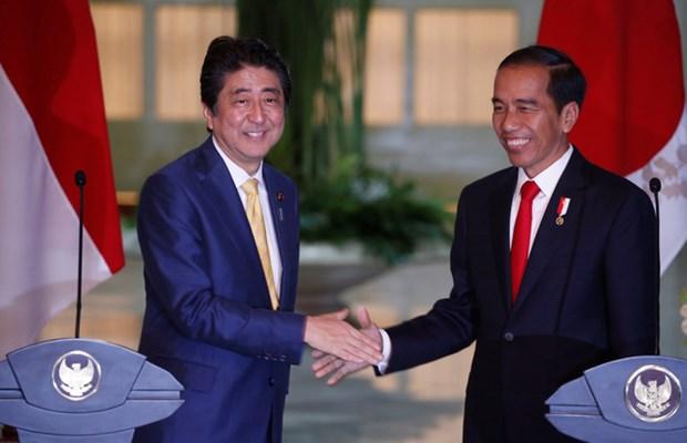 日本与印尼巩固战略伙伴关系 hinh anh 1