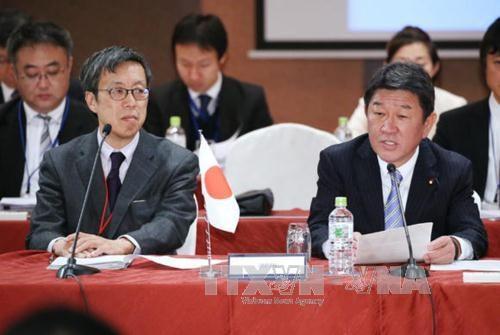 11国将于今年3月签署CPTPP hinh anh 2