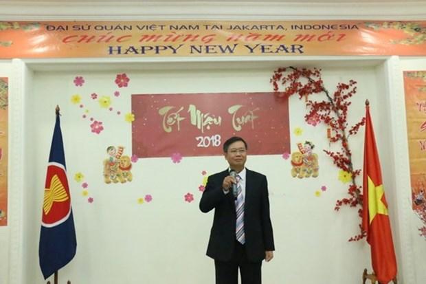 旅外越南人欢喜迎新春 hinh anh 1