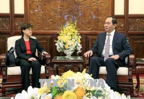 国家主席陈大光会见新加坡和埃及驻越大使 hinh anh 1