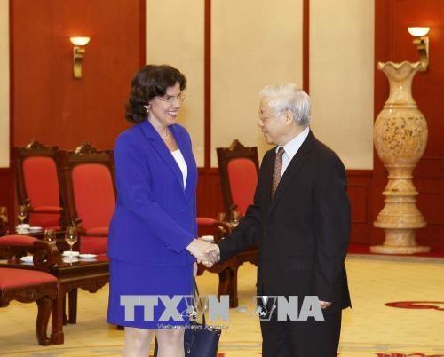 越共中央总书记阮富仲会见古巴新任驻越大使 hinh anh 1