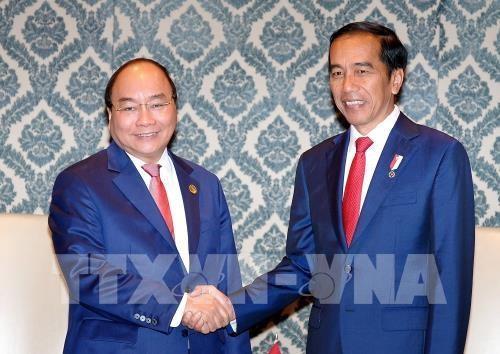 阮春福:重视将越南与柬埔寨和印尼所达成的协议落到实处 hinh anh 1