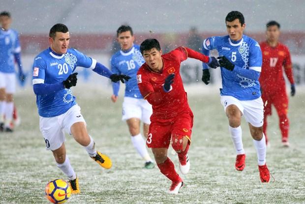 《福布斯》:对青少年足球的重视是越南U23足球队的成功之道 hinh anh 1